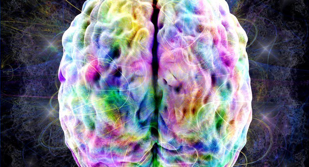 brain activated